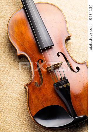 Violin 9284134