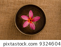 frangipani spa concept photo, lowlight ambient spa lighting, sha 9324604