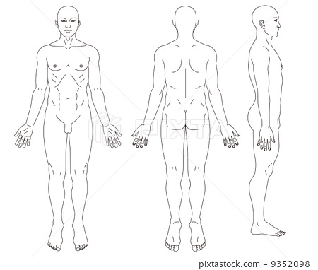 schematic diagram of male human body stock illustration heart schematic diagram body schematic diagram #3