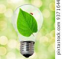 electricity, bulb, energy 9371644