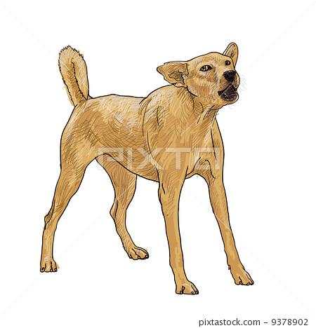 Barking dog 9378902