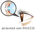 眼睛 眼 目光 9410215
