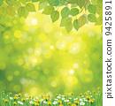 dandelion, spring, green 9425891