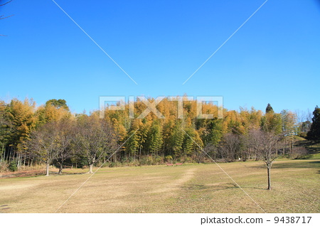 Winter Park 9438717