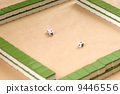 Gambling and dice 9446556