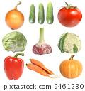 garlic onion cabbage 9461230