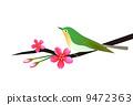 花和鳥 9472363