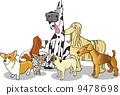 寵物 毛孩 毛小孩 9478698