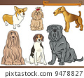 purebred dogs cartoon illustration set 9478827