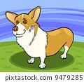 pembroke welsh corgi dog cartoon illustration 9479285