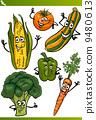 vegetables, set, drawing 9480613