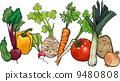 root, vegetable, cartoon 9480808