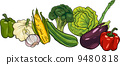 vegetable, green, cartoon 9480818
