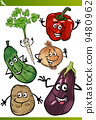 drawing, vegetables, set 9480962