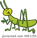 illustration, grasshopper, bug 9481285