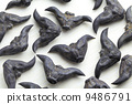 Horn Shaped Water Caltrop 9486791