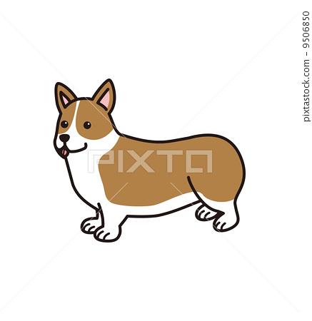 柯基犬 9506850