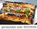 阿納戈食品 9559685