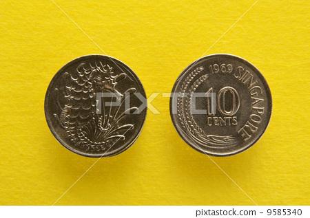 海馬的新加坡硬幣 9585340