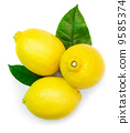 closeup, photo, citron 9585374