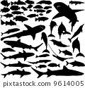 ปลา,คอลเลคชั่น,ของสะสม 9614005