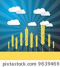 farm, corn, field 9639469