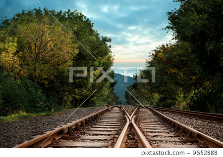 Railway tracks in the middle of a forest 9652888