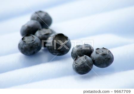 blueberry 9667709