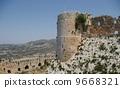 叙利亚的裂缝de Chevalier 9668321
