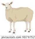 sheep, shepherd, web 9679752