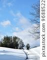 fallen, snow, avenues 9688522