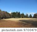 砧公園 冬の芝生 9700479
