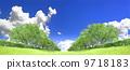 Zelkova trees tree grassland blue sky cloud cut synthesis 9718183
