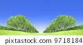 Zelkova trees tree grassland blue sky cutout synthesis 9718184