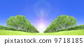 Zelkova trees tree grassland blue sky backlight cutout synthesis 9718185