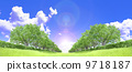 Zelkova trees tree grassland blue sky cloud backlight cutout synthesis 9718187