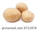 土豆 马铃薯 蔬菜 9722476