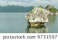 หินปูน,เวียดนาม,น้ำ 9731597