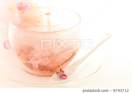 鹽漬櫻花盛開的輸液 9743712