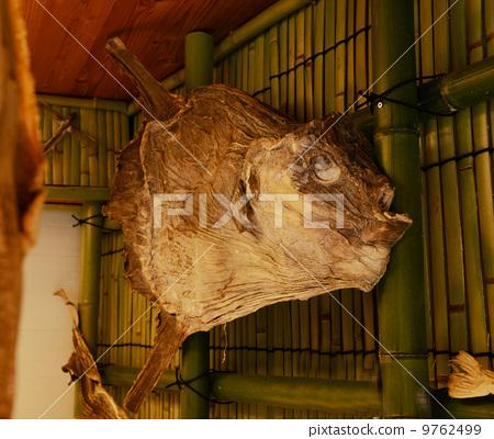 Dried sunfish 9762499