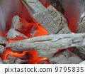 charcoal fire, bleaching, albinism 9795835