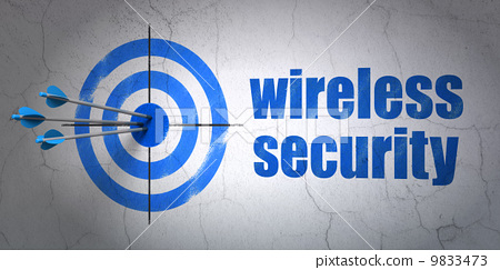 Privacy concept: target and Wireless Security on wall background 9833473
