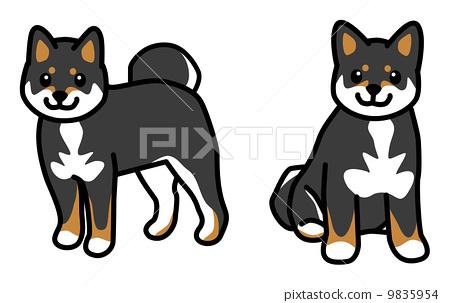 Dog Shiba Inu Kuroba illustration 9835954