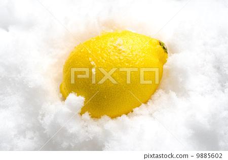 Lemon 9885602