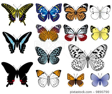 日本蝴蝶 9890790
