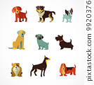 Dogs icons and illustrations 9920376