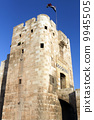 The gate of Aleppo castle 9945505