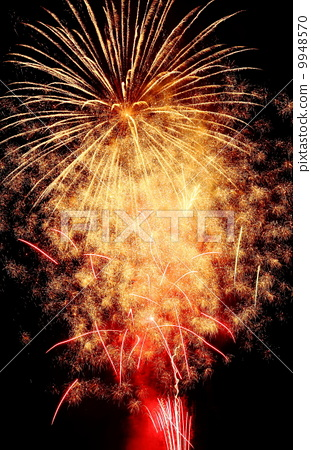 fireworks 9948570