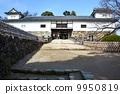 Hikone castle 9950819