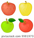 vector, nature, fruit 9981970